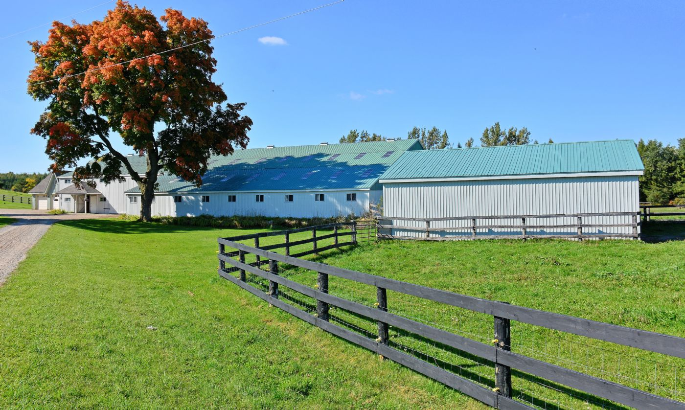 horse country caledon country homes luxury real estate