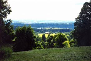 150 Acres, Hockley Valley